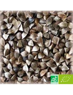 MALT CHÂTEAU BUCKWHEAT NATURE (SARRASIN BIO) 4-15 EBC