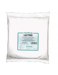 Lactose (sucre de lait) 250 g