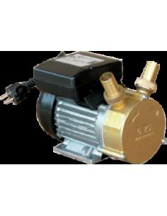 Pompe de transfert bronze D20