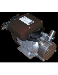 Pompe en acier pour liquide chaud D20