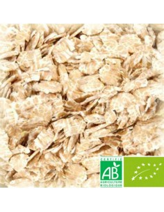 CHÂTEAU CHIT WHEAT NATURE MALT FLAKES (BLÉ FLOCONS BIO) 3–7 EBC