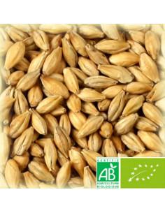 CHÂTEAU PILSEN NATURE® 3.0-3.5 EBC
