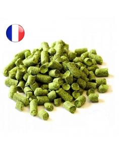 Houblon Bouclier (FR) en pellets pour le brassage de la bière