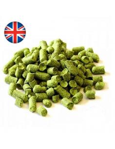 Houblon en pellets Flyer (UK)