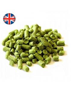 Houblon First Gold en pellets (UK)