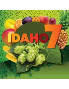 IDAHO7 (US) 2019