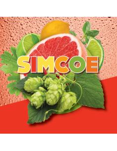 SIMCOE® (US) 2019