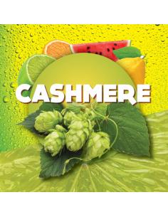 CASHMERE (US) 2019