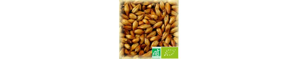Malts Caramel Bio