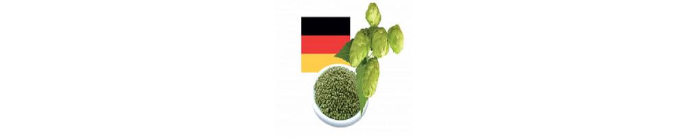 Achat Houblon Allemagne